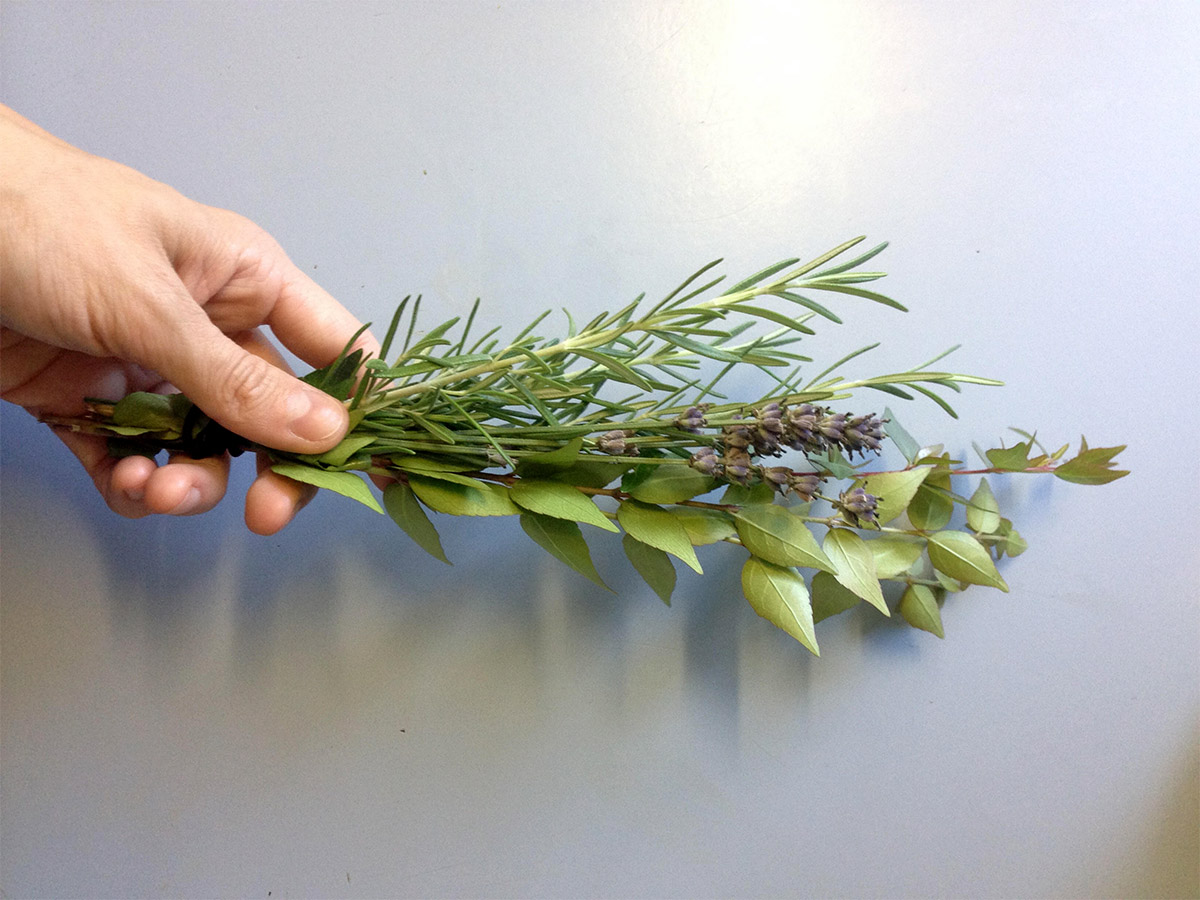 lavender and rosemary from the garden by Meraki Botanicals